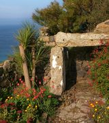 Image of The coastal or windswept garden