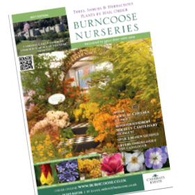2017 Burncoose Catalogue is now available