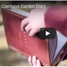 The Caerhays Garden Diary