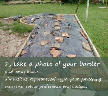 take a photo of your garden