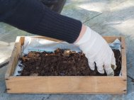 3 compost with grit