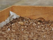 1 compost with grit