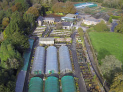Aerial Views from Burncoose Gardens