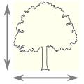 Tree type desc