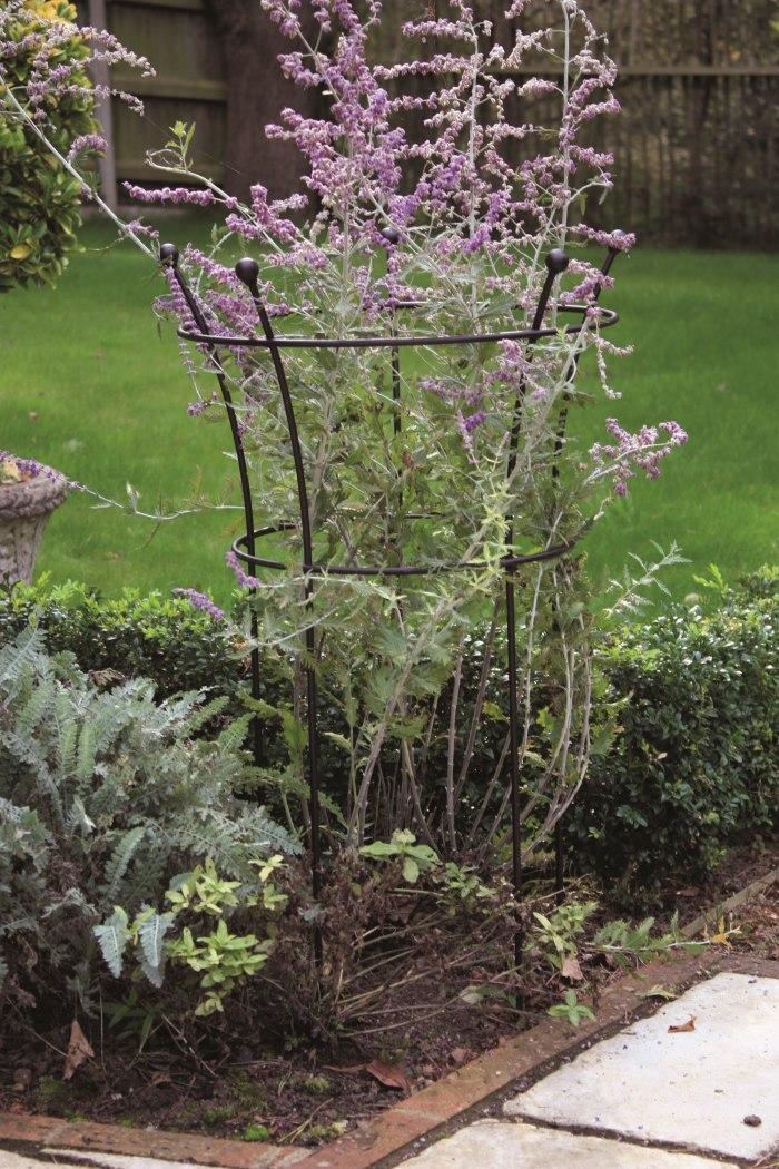 Harrod Horticultural plant support