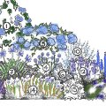 Photo of A selection of blue flowering plants to make the perfect border - SAVE £41.50