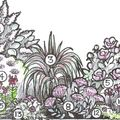 Photo of A selection of pink flowering plants to make the perfect border - SAVE £58.50