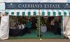 Caerhays stand 2011