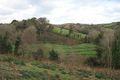 Old Park Wood
