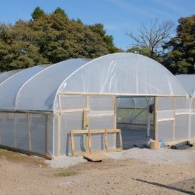 New Herbaceous Tunnel at Burncoose
