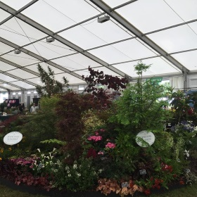 Silver-Gilt at Hampton Court Show