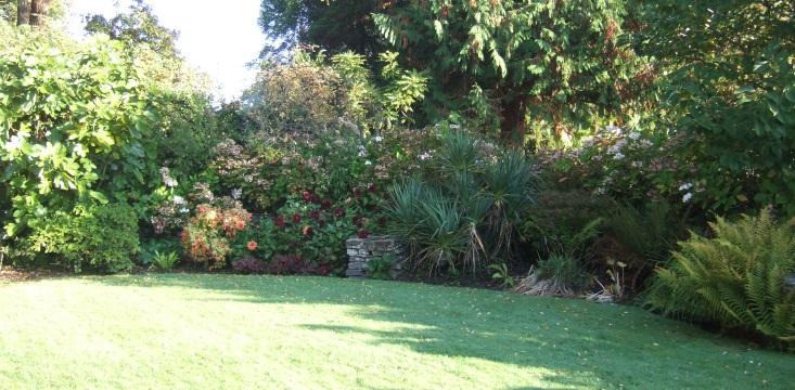 Hydrangea Garden - Wales
