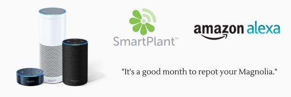smartplant competition