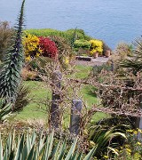 Coastal garden on the River Fal