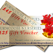 Burncoose Gift Vouchers - Save 15%!