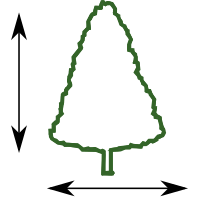 tree - guide for size not form
