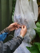 10. Keep tying in the filling material as you go.